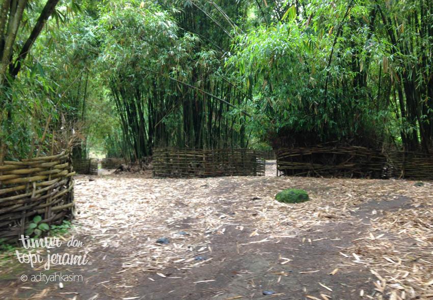 03-bamboo