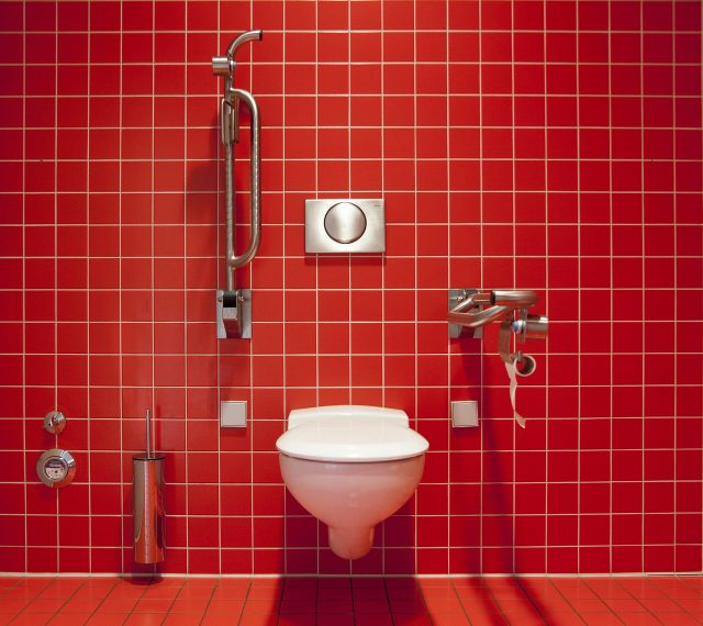 polisi-jepang-tangkap-pelaku-corat-coret-gambar-tahi-'bau'-di-berbagai-toilet-umum