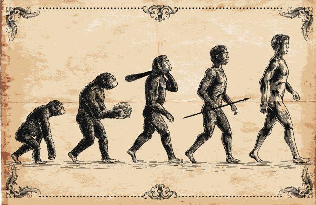 seribu-tahun-sebelum-darwin,-ilmuwan-muslim-sudah-menulis-evolusi-dan-seleksi-alam
