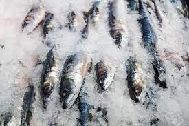 sulawesi-utara-ekspor-18-ton-ikan-tuna-beku-ke-as