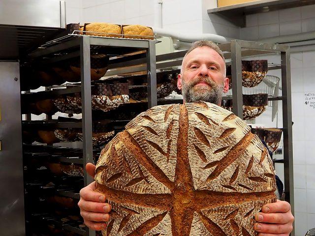 tukang-roti-di-italia-berhasil-budidayakan-lagi-gandum-dari-zaman-prasejarah
