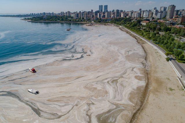 pantai-di-turki-alami-problem-'ingus-laut'-akibat-perubahan-iklim