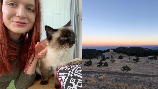 berkat-kucing,-perempuan-australia-bisa-menginap-gratis-saat-liburan